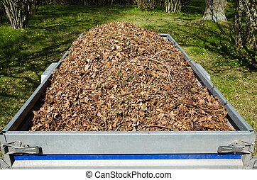 Dry leaves loaded in a small trailer