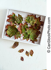 Dry maple leaves on a white wooden tray, autumn
