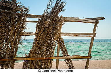 dry palm branches on the background of the sea and clear sky close up