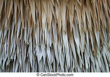 dry plam leaves