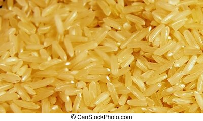 Dry raw rice paddy grains pour and spin slowly