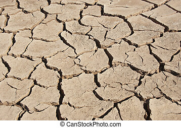 Dry river bed - Cracked mud tiles in dry river bed. Hutt ...