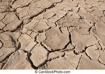 Cracked mud tiles in dry river bed. Hutt River, Western Australia
