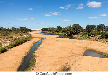 Broad dry river with small trickle of water and animal tracks crossing to pools in Kruger National park in South Africa