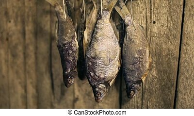 Dry roach fish - roach fish hanged on log wall for drying