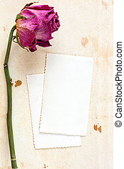 Dry rose and blank card