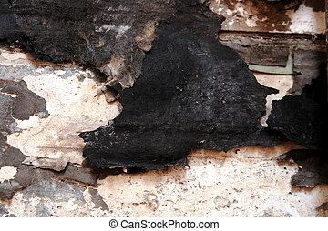 dry rot damage under a bathroom wall