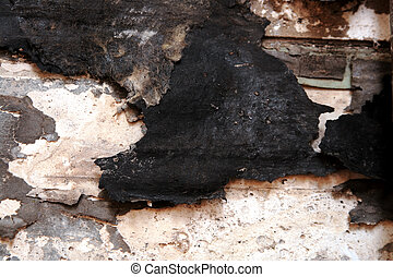 dry rot damage under a bathroom wall
