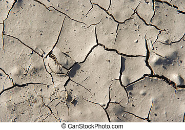 dry season - dried ground - Detail of the cracked ground -...