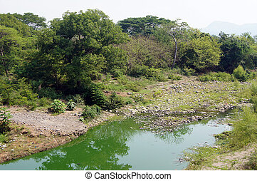 Dry season - Tropical river in Nicaragua at the end of dry...