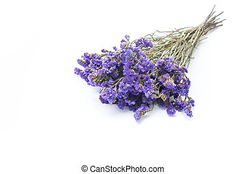 Dry statice flower on white background
