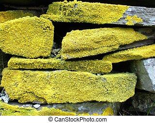 Dry stone wall 2
