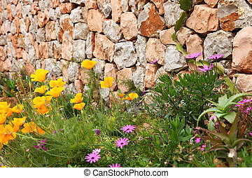 Detail of an old dry stone wall with pretty yellow and purple flowers growing at the base