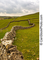 Dry stone walls snake their way into the distant fields on the Yorkshire Moors near Malham, North Yorkshire
