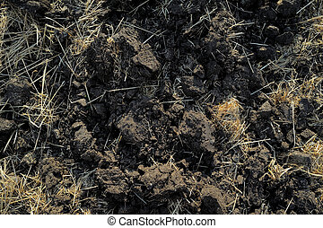 dry to plow the earth is black soil