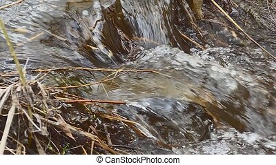 dry twigs grass nature flowing twig waterfall water boils...