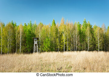 Dry yellow grass, spring forest with a hunting tower and a clear sky