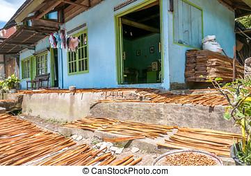 Drying Cinnamon in Sumatra - Indonesia