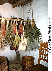 Drying Herbs - Herbs and gourds drying in kitchen of...