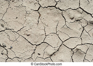 dryness - Detail of the parched earth