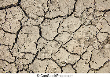 Soil torn up due to severe drought.