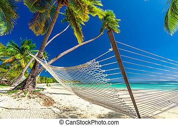 drzewa, hamak, dłoń, cień, wyspy, fidżi, opróżniać