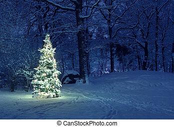 drzewo, śnieg, boże narodzenie