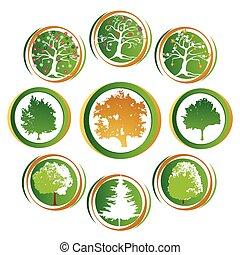 drzewo, ikona, zbiór