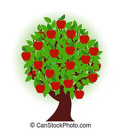 drzewo jabłka, na białym, tło