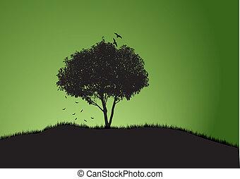 drzewo, jeden