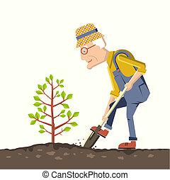 drzewo, ogrodnik, dziad, roślina