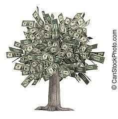 drzewo pieniędzy