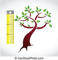 drzewo, projektować, ilustracja, miara