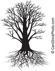 drzewo, sylwetka
