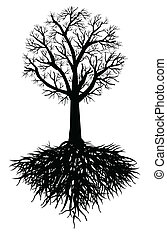 drzewo, wektor, korzeń