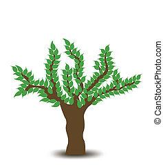 drzewo., wektor, projektować