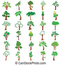 drzewo, zbiór