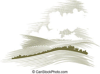 drzeworyt, skyscape