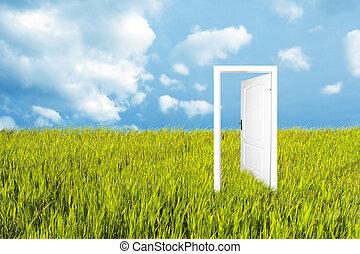 drzwi, do, przedimek określony przed rzeczownikami, nowy świat