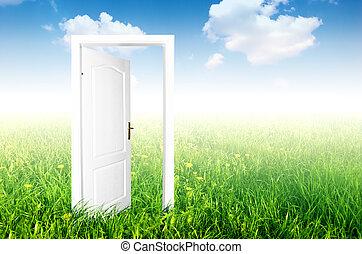 drzwi, do, przedimek określony przed rzeczownikami, nowy, world.