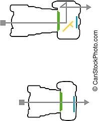 DSLR and mirrorless camera - How DSLR and mirrorless camera...