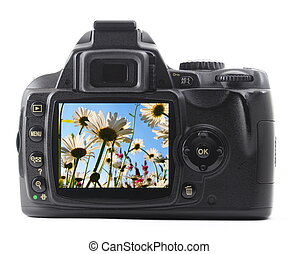 dslr with summer flower isolated on white background...