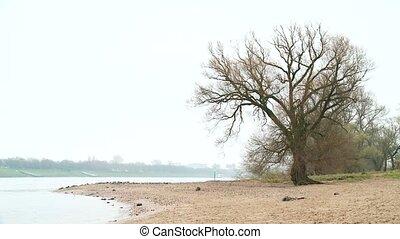 D?sseldorf River Side
