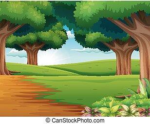 dużo, rysunek, scena, drzewa, las