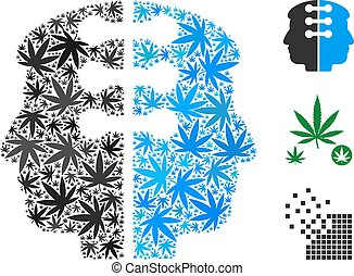 Dual Head Interface Composition of Hemp Leaves
