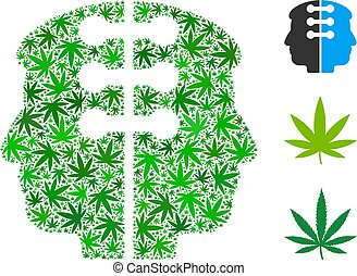 Dual Head Interface Composition of Marijuana