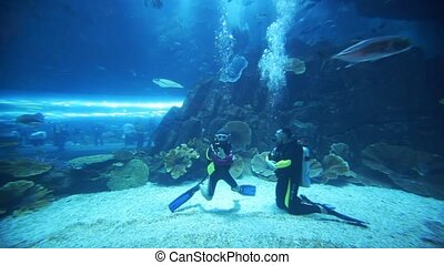Two divers in oceanarium inside Dubai Mall