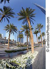 Dubai street with palm trees in UAE - Dubai street with palm...