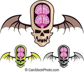 dubbel, kranium, hjärna