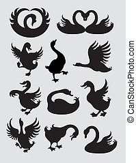 Duck and Swan Silhouettes Vector - Smooth and detail line...